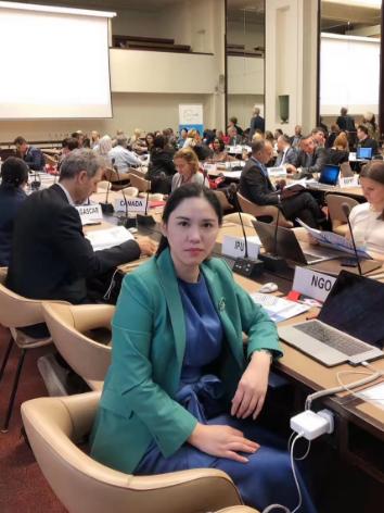 """国际信息发展组织出席2019""""为联合国发展系统融资""""年度报告简会"""