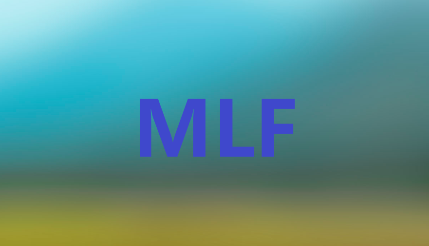 MLF20201116154400.png